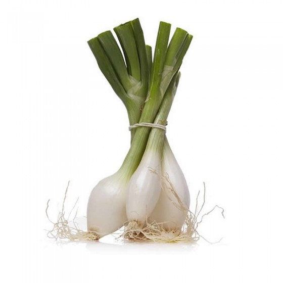 Organic onions 1 bunch