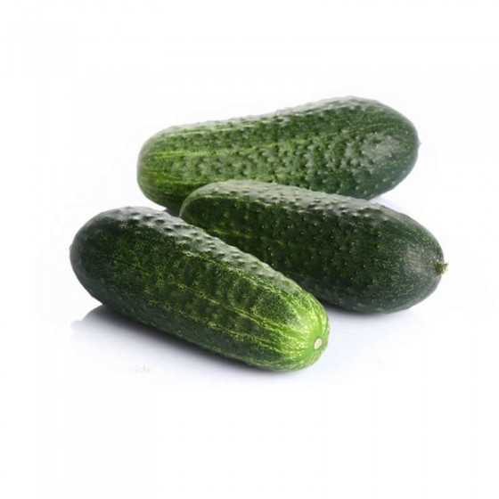 Organic short cucumber 5 Kg.