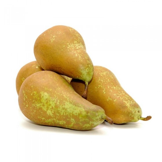 Organic Conference Pears 10 kg.