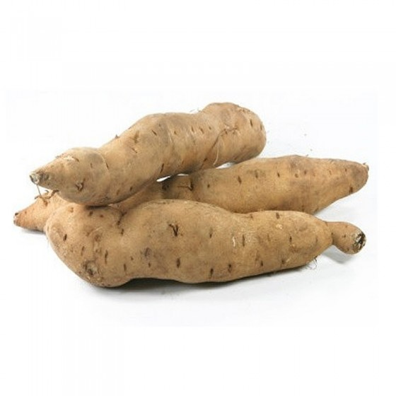 Organic white sweet potato 6 Kg.