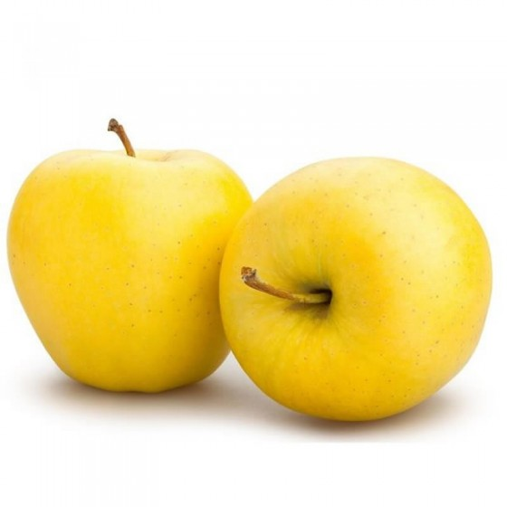 Organic Golden Apples 8 kg.